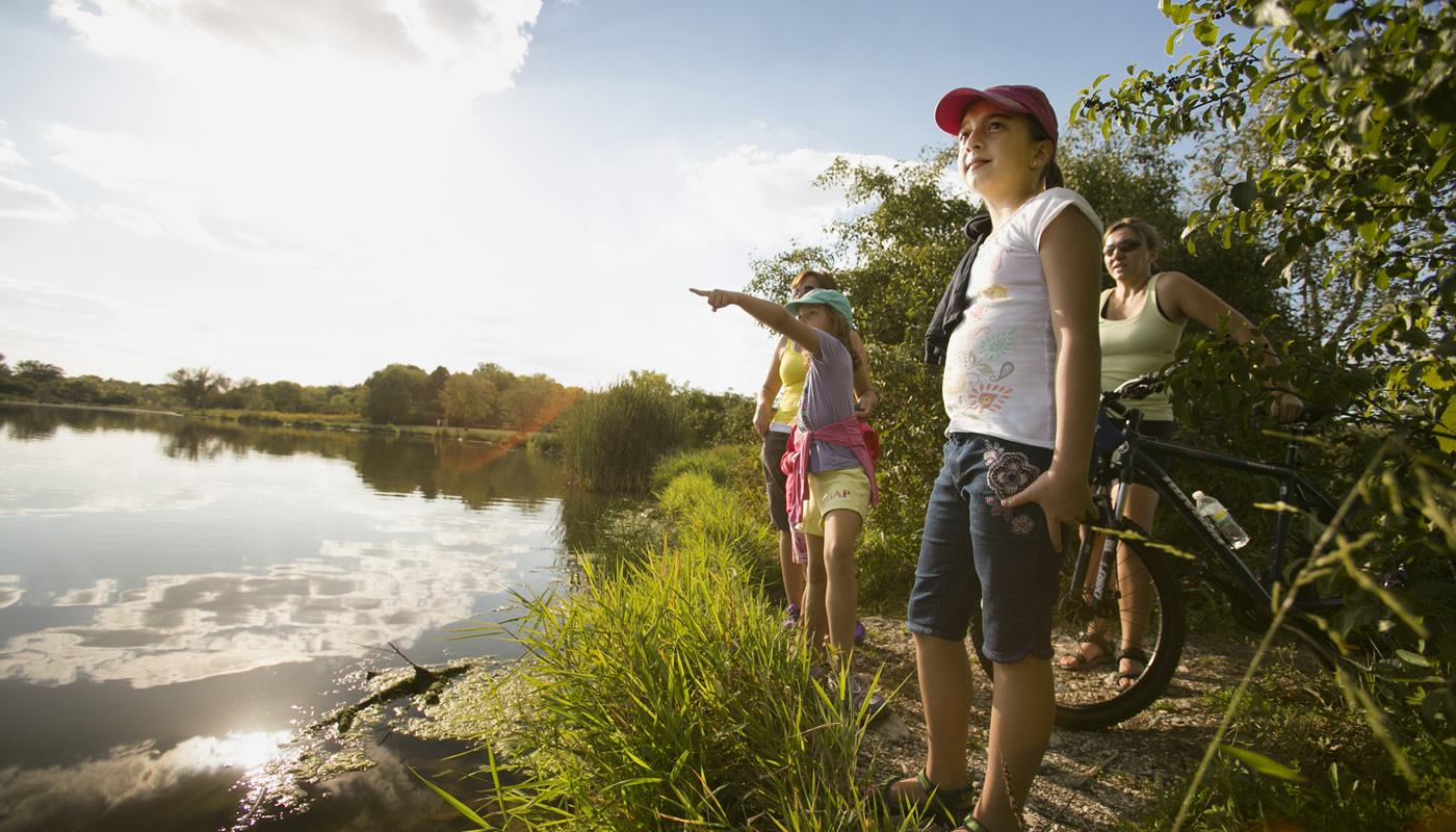 Busse Woods - Forest Preserves of Cook County