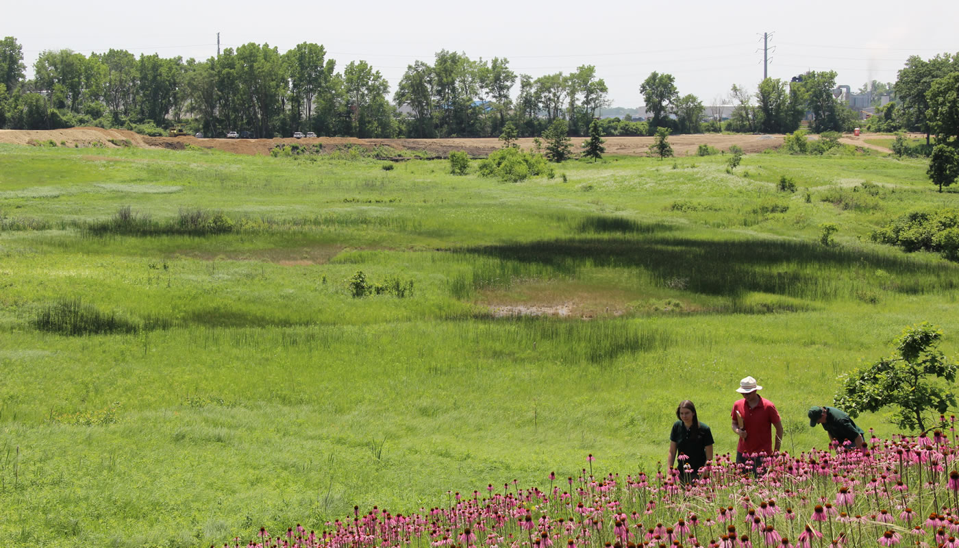 three people examining restoration progress at Bluff Spring Fen