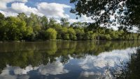 the Des Plaines River at Columbia Woods