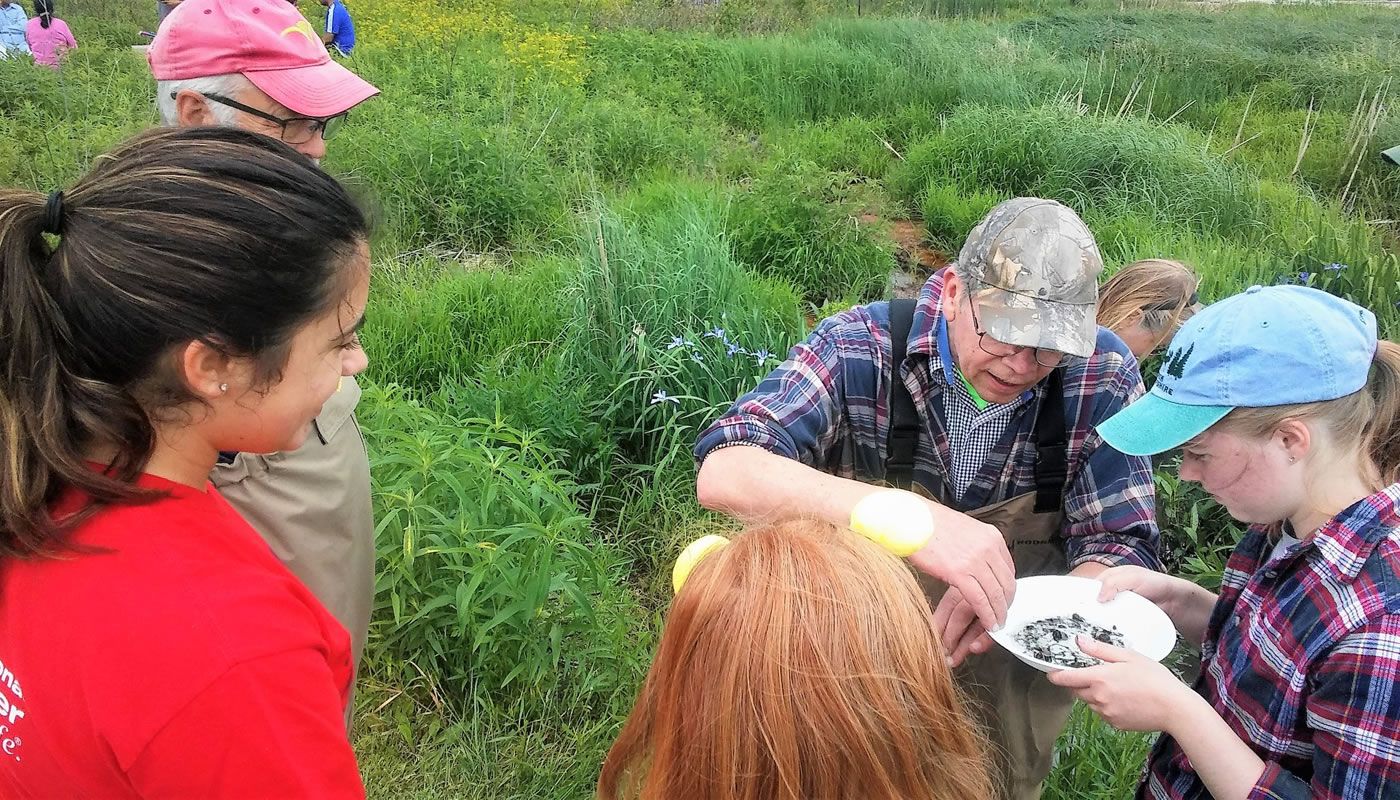 a group of volunteers looking at a water sample while monitoring macroinvertebrates at Deer Grove.