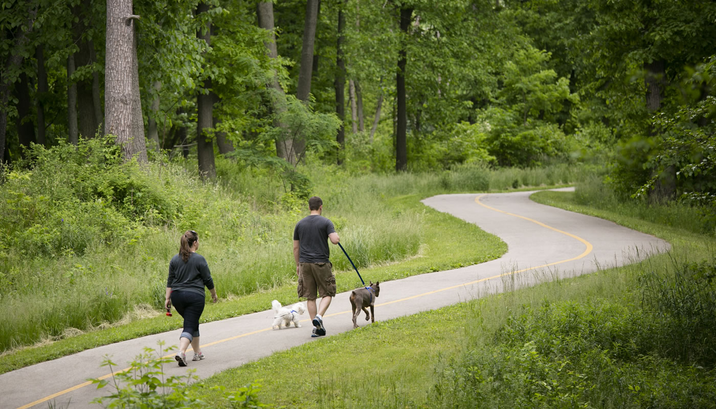 two people walking dogs on the Salt Creek Trail at Bemis Woods