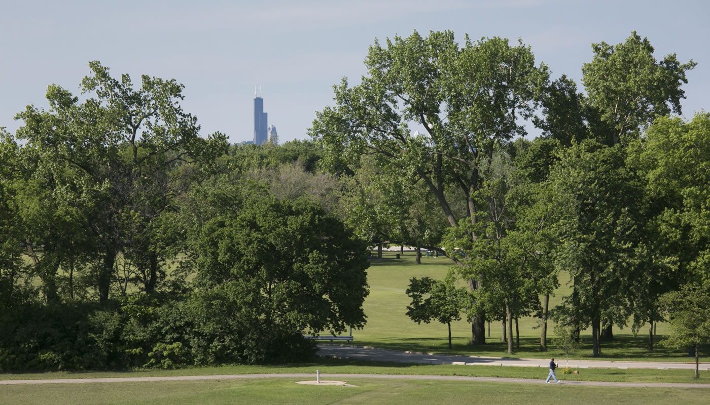 Dan Ryan Woods with the Sears Tower in the background