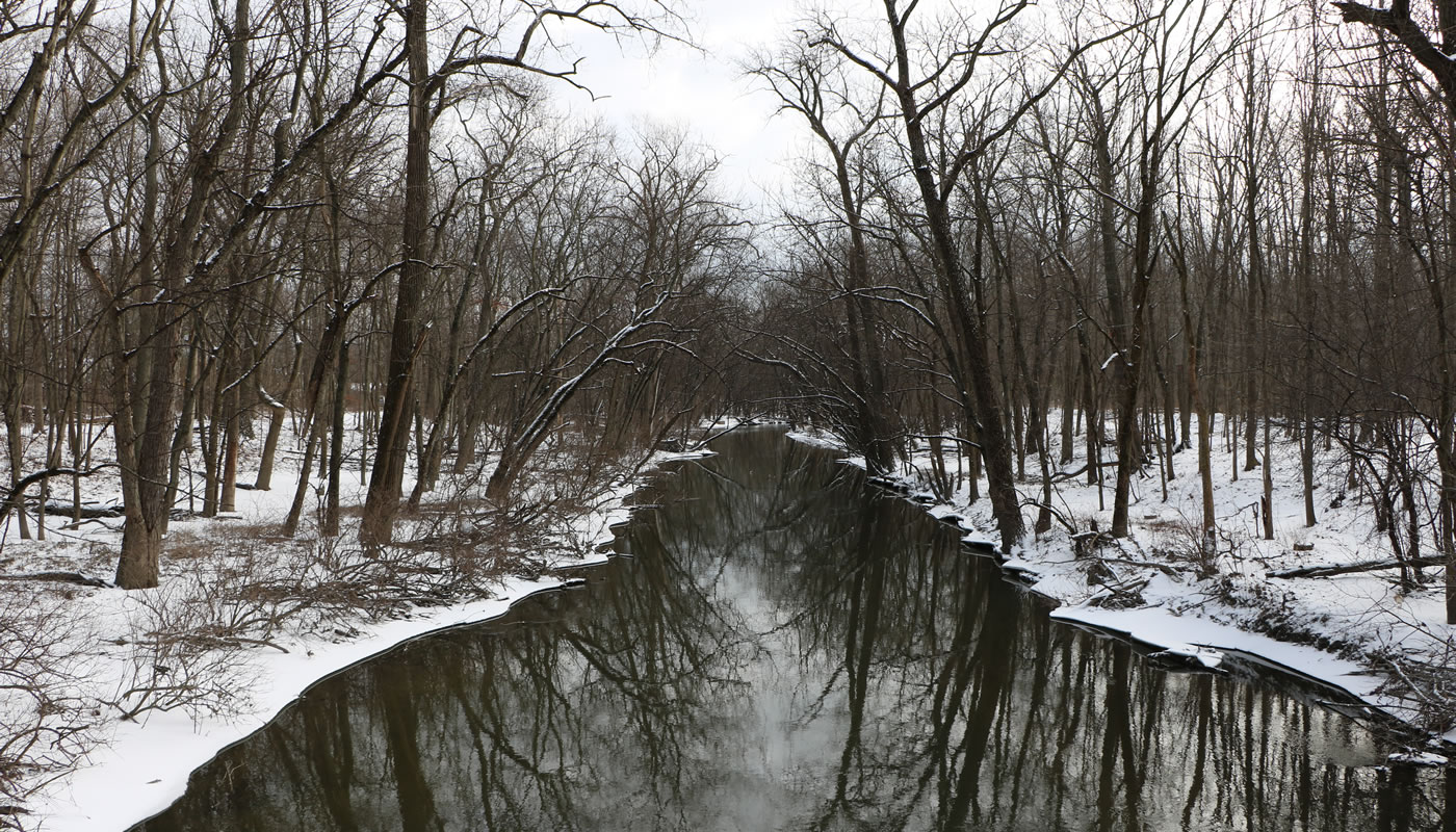 the North Branch of the Chicago River at Harms Woods