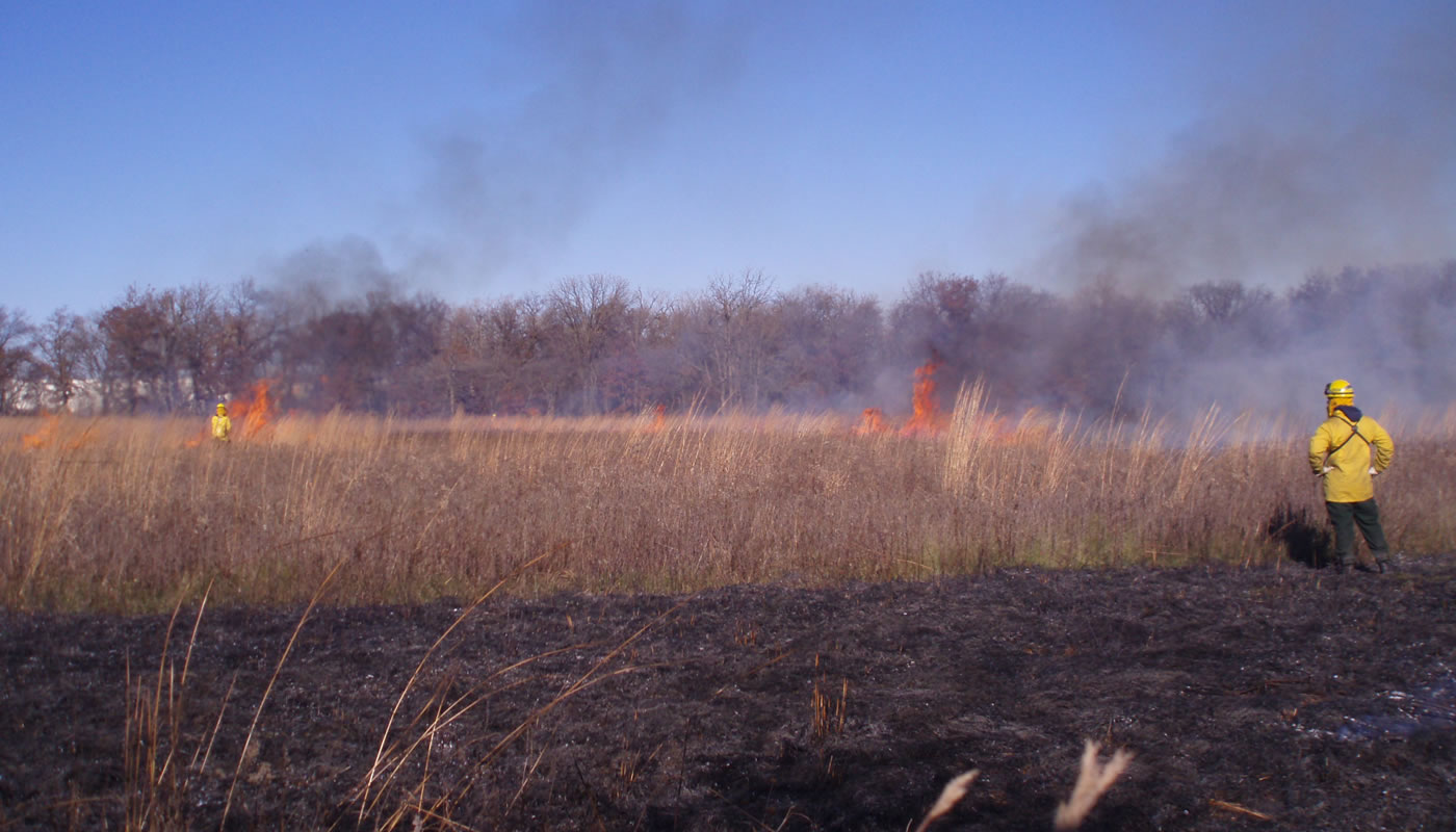 a prescribed burn at Miami Woods Prairie