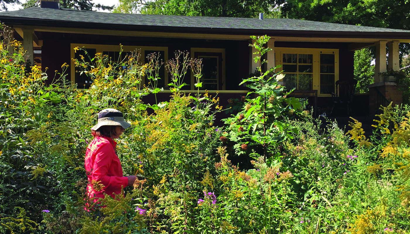 a Conservation at Home evaluator in a home garden.