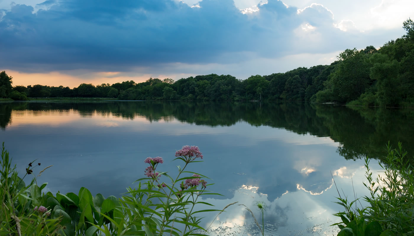 Horsetail Lake during the evening. Photo by Sharon Dobben.