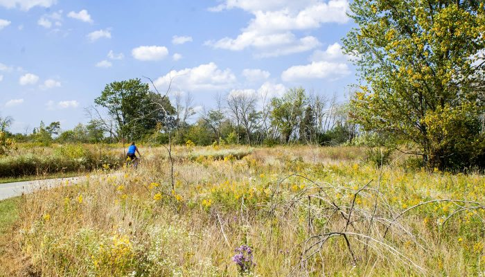 Paved trail at Orland Grassland. Photo by Andrew Dunning.
