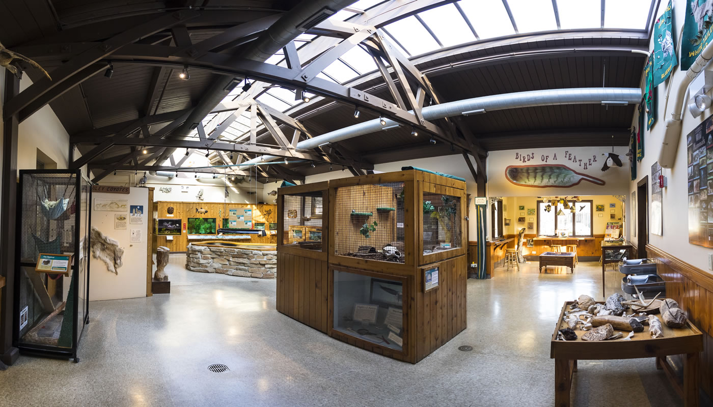 one of the exhibit rooms inside River Trail Nature Center