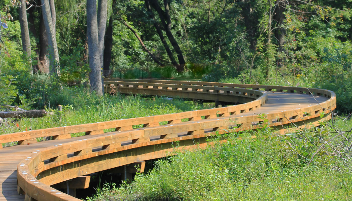 the boardwalk on the Lost Beach Trail at Sand Ridge Nature Center