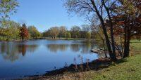 Schiller Woods Pond. Photo by Jeremy Riel.