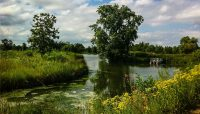 A lagoon with a boat at Skokie Lagoons. Photo by chmoss.