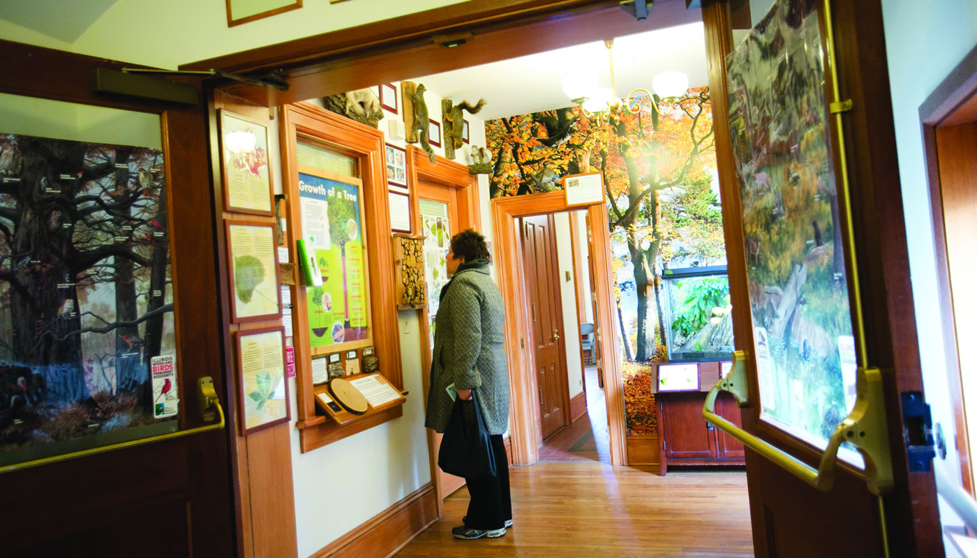 a person looks at an exhibit inside Trailside Museum