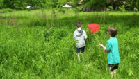 two children with butterfly nets at Crabtree Nature Center