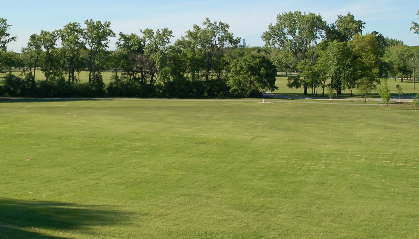 an athletic field at Dan Ryan Woods