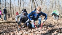 two volunteers cut buckthorn with loppers at River Trail Nature Center