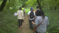 citizen scientists walking in the woods