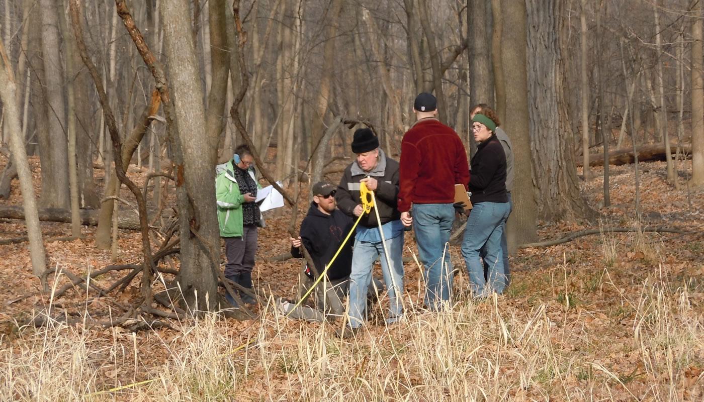 volunteers measuring a gully
