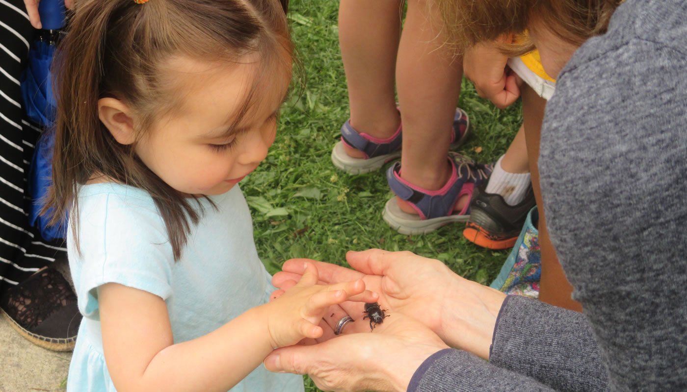 kids inspect an insect in someone's hand