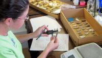 archaeologist measuring an arrowhead