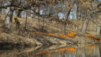 A prescribed burn at Arthur L. Janura Preserve.