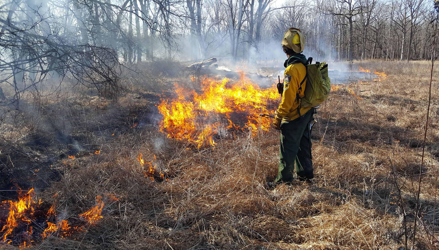 a person keeping watch over a prescribed burn