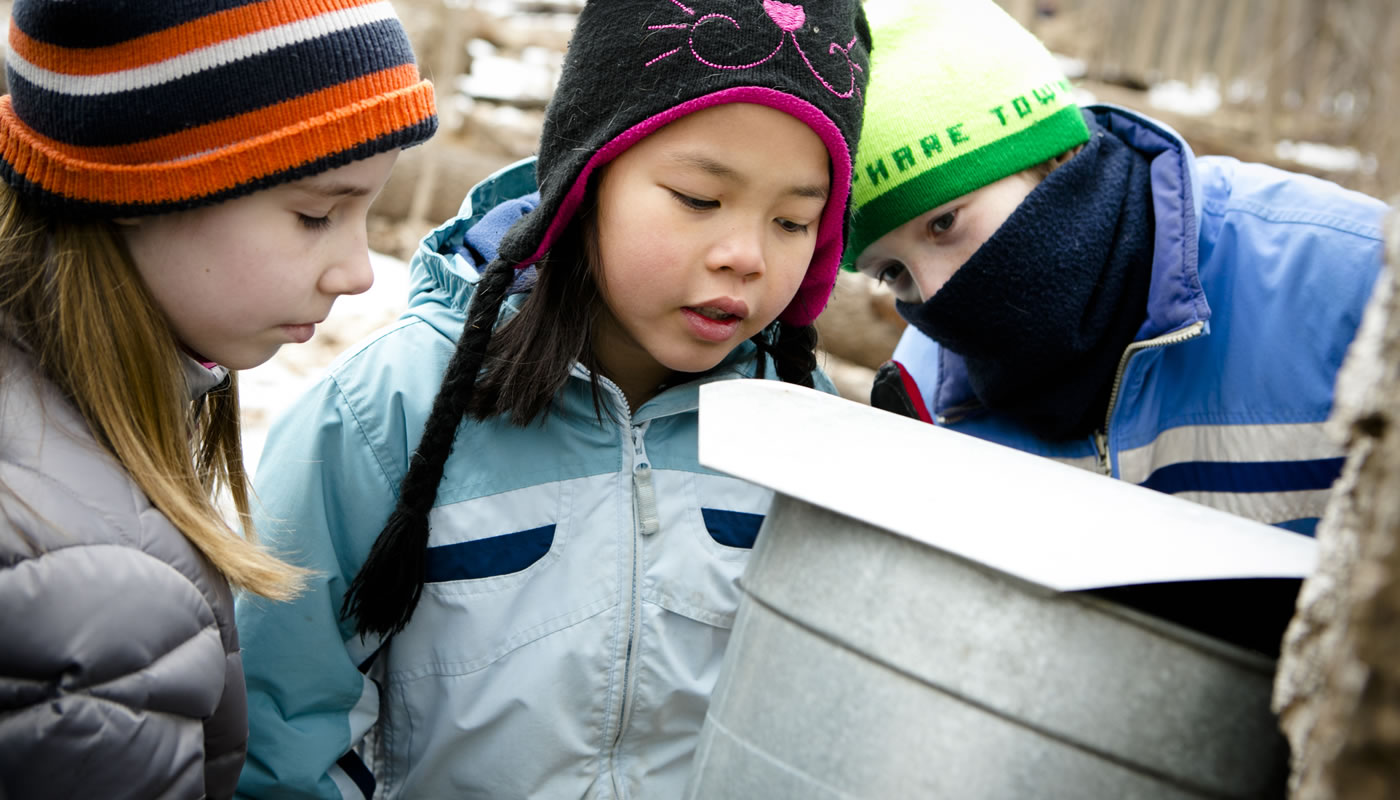 Children looking into a sap bucket at River Trail Nature Center's Maple Syrup Festival.