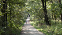 two runners on the Sag Valley Trail at Swallow Cliff Woods
