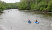 canoes and kayaks racing on the Des Plaines River