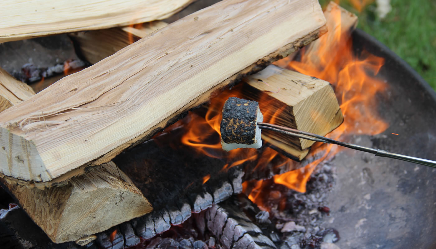 a marshmallow roasting over a campfire