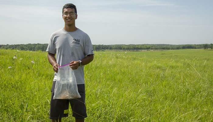 Israel Gomez collecting seed at Poplar Creek
