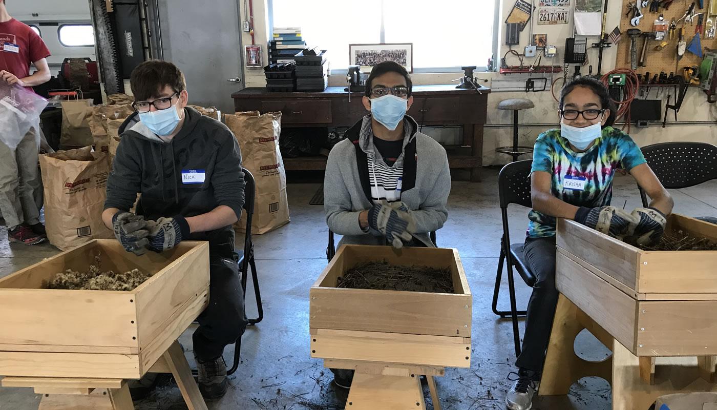 Three volunteers performing seed processing.