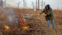 A volunteer throws brush onto a brush pile burn
