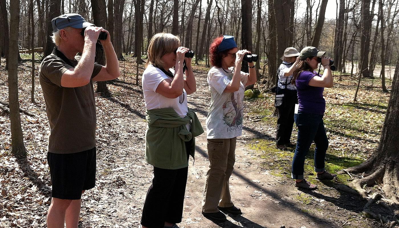 a group birding at Thatcher Woods