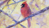 a painting of a northern cardinal