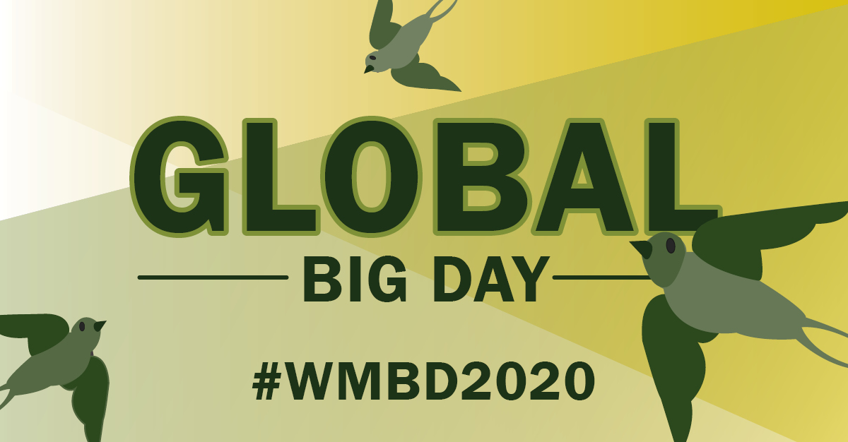 Global Big Day WMBD2020