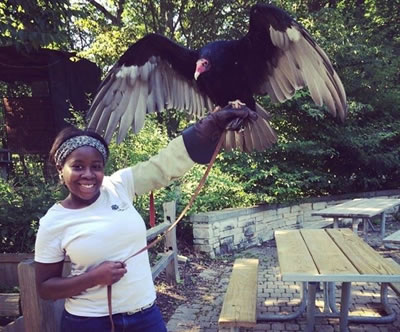 Tiquiria Hall holding a turkey vulture at Trailside Musem of Natural History