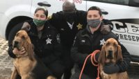Forest Preserves Police with New Canine Officers