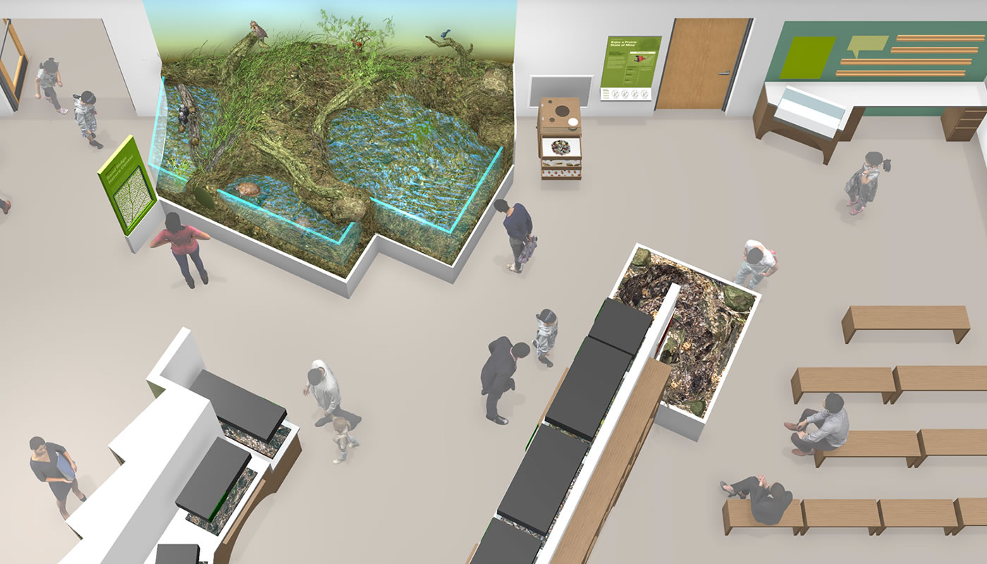 A rendering of new exhibits at Sand Ridge Nature Center, scheduled to open to the public later in 2021.