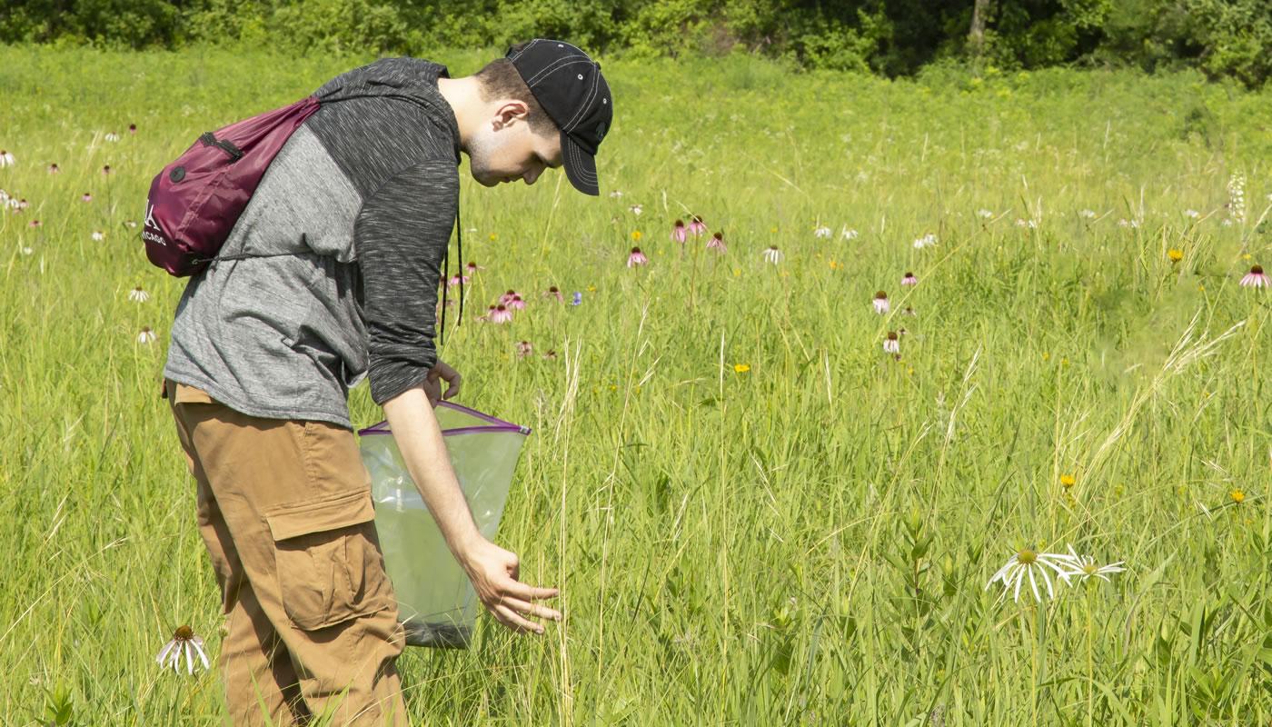 Volunteer Stephen Matz collecting seeds.